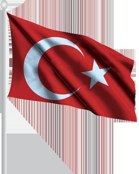 Alpaka Kumaşa Ronjan  Baskı Bayrak YDB01